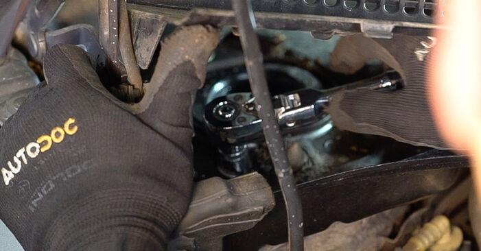 Stoßdämpfer Ihres Renault Scenic 2 1.6 2003 selbst Wechsel - Gratis Tutorial