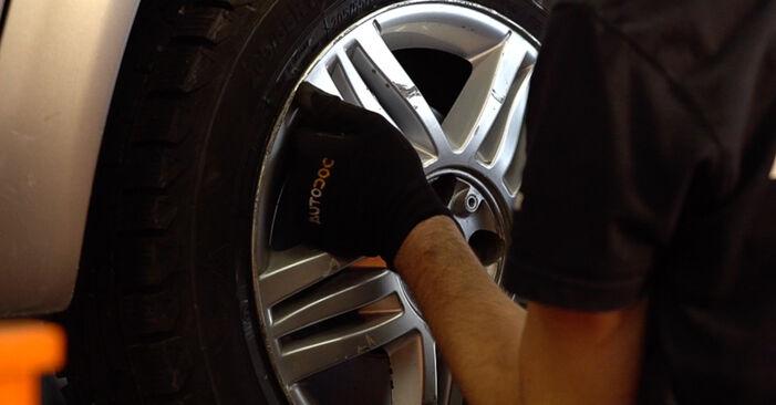 Trinn-for-trinn anbefalinger for hvordan du kan bytte Renault Scenic 2 2008 2.0 Stabilisatorstag selv