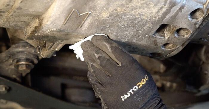 Trinn-for-trinn anbefalinger for hvordan du kan bytte Renault Scenic 2 2008 2.0 Oljefilter selv