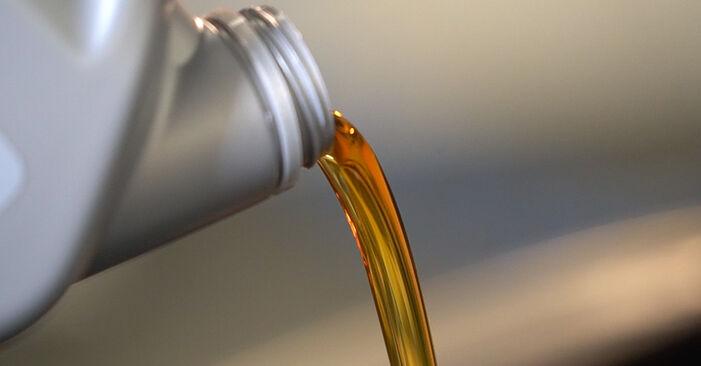 Hvordan bytte Oljefilter på RENAULT SCÉNIC II (JM0/1_) 1.6 16V 2006 selv