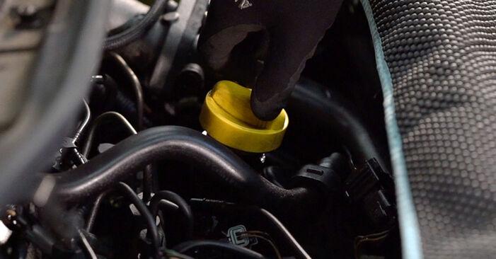 Bytte Renault Scenic 2 1.5 dCi 2005 Oljefilter: gratis verkstedsveiledning