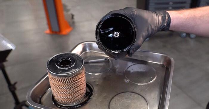Wie Kraftstofffilter RENAULT SCÉNIC II (JM0/1_) 1.5 dCi 2004 austauschen - Schrittweise Handbücher und Videoanleitungen