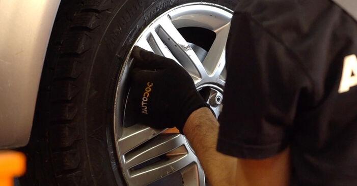 Schritt-für-Schritt-Anleitung zum selbstständigen Wechsel von Renault Scenic 2 2008 2.0 Kraftstofffilter