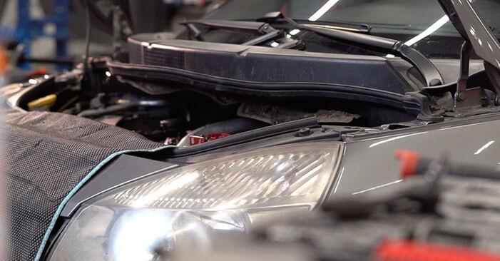 Kraftstofffilter Renault Scenic 2 1.6 2005 wechseln: Kostenlose Reparaturhandbücher