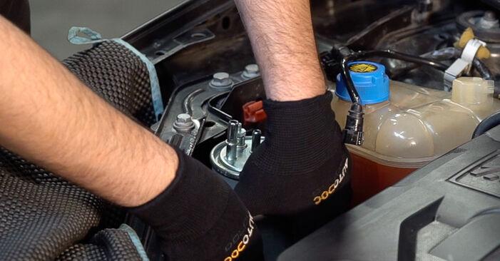Combien de temps dure le remplacement : Filtre à Carburant sur FIAT BRAVO II (198) 2014 - manuel PDF informatif