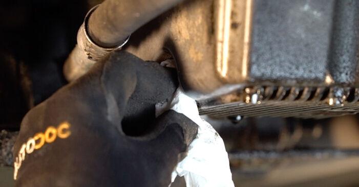 Wie schwer ist es, selbst zu reparieren: Ölfilter FIAT BRAVO II (198) 1.9 D Multijet 2012 Tausch - Downloaden Sie sich illustrierte Anleitungen