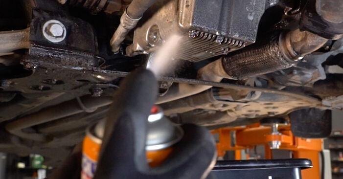 Ölfilter Ihres FIAT BRAVO II (198) 1.4 2014 selbst Wechsel - Gratis Tutorial