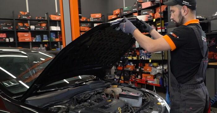 Wie Keilrippenriemen Opel Astra H Limousine 1.6 (L69) 2007 tauschen - Kostenlose PDF- und Videoanleitungen