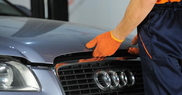 Recommandations étape par étape pour remplacer soi-même Audi A4 B7 Avant 2007 2.0 TFSI quattro Ressort d'Amortisseur