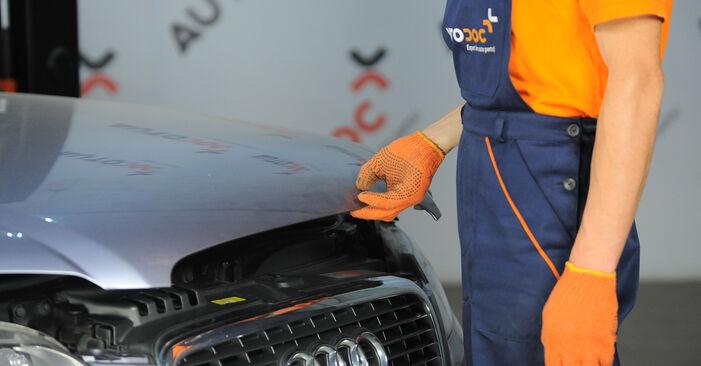 Combien de temps dure le remplacement : Ressort d'Amortisseur sur Audi A4 B7 Avant 2007 - manuel PDF informatif