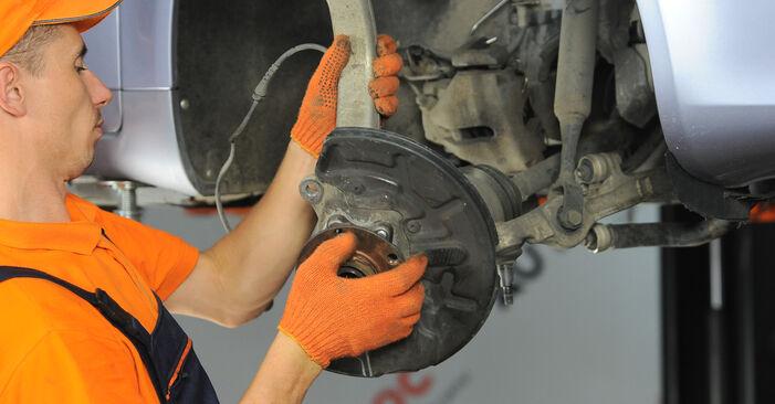 Kiek užtrunka keitimas: Audi A4 b7 2007 Rato guolis - informatyvi PDF instrukcija