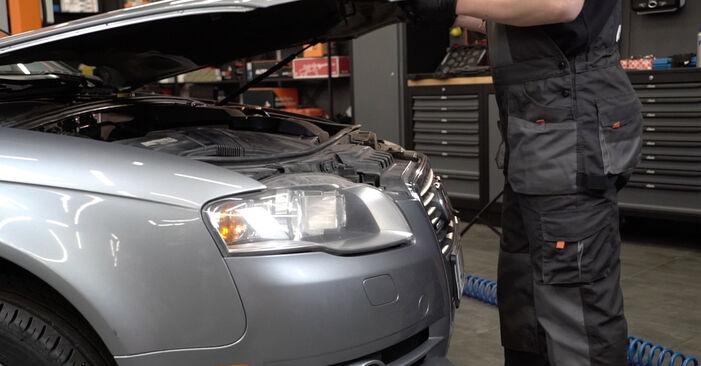 Kaip pakeisti Spyruoklės la Audi A4 B7 Sedanas 2004 - nemokamos PDF ir vaizdo pamokos