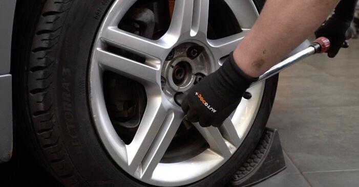 Kiek užtrunka keitimas: Audi A4 B7 Sedanas 2007 Spyruoklės - informatyvi PDF instrukcija