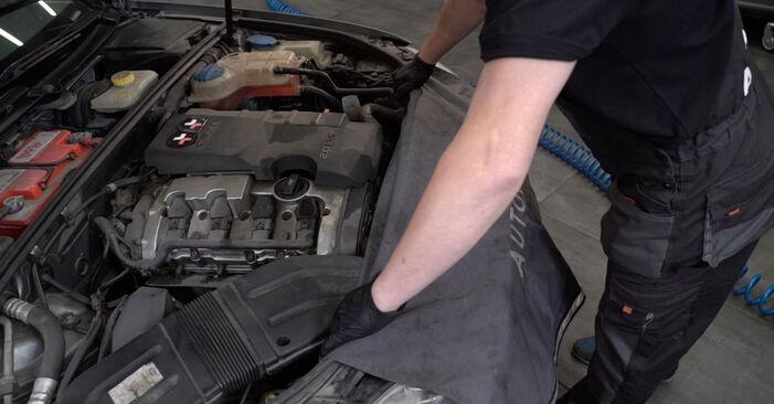 Wie Stoßdämpfer AUDI A4 Limousine (8EC, B7) 1.9 TDI 2005 austauschen - Schrittweise Handbücher und Videoanleitungen