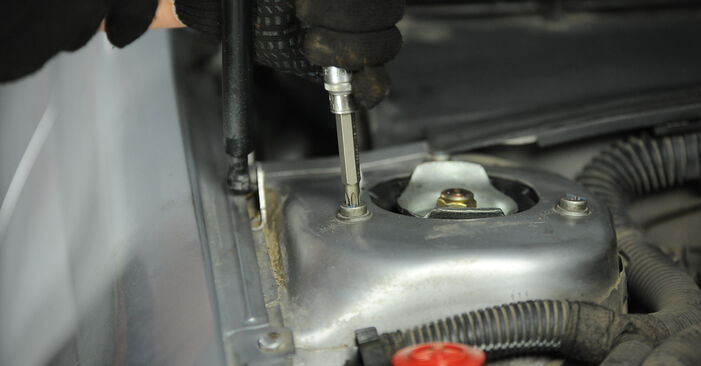 Consigli passo-passo per la sostituzione del fai da te Peugeot 406 Sedan 1997 1.9 TD Supporto Ammortizzatore