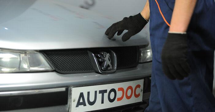 Sostituendo Supporto Ammortizzatore su Peugeot 406 Sedan 2005 2.0 HDI 110 da solo
