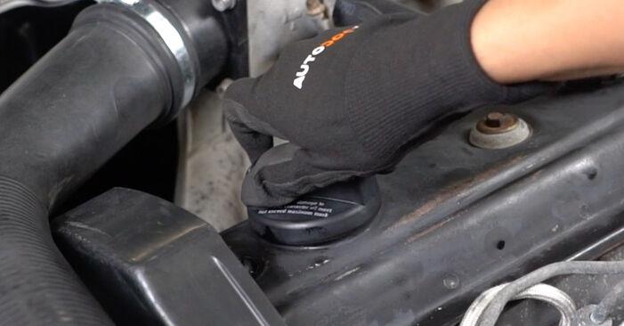 Ölfilter am VW GOLF III (1H1) 1.9 D 1996 wechseln – Laden Sie sich PDF-Handbücher und Videoanleitungen herunter