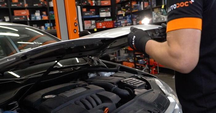 Wie Zündspule Golf 5 1.9 TDI 2003 tauschen - Kostenlose PDF- und Videoanleitungen