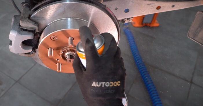 TOYOTA RAV4 2.0 4WD (ACA30_) Federn ausbauen: Anweisungen und Video-Tutorials online