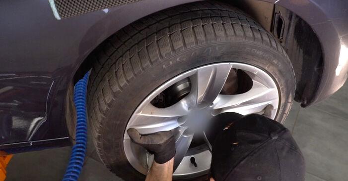 BMW 3 SERIES 2012 Blazilnik priročnik za zamenjavo s koraki