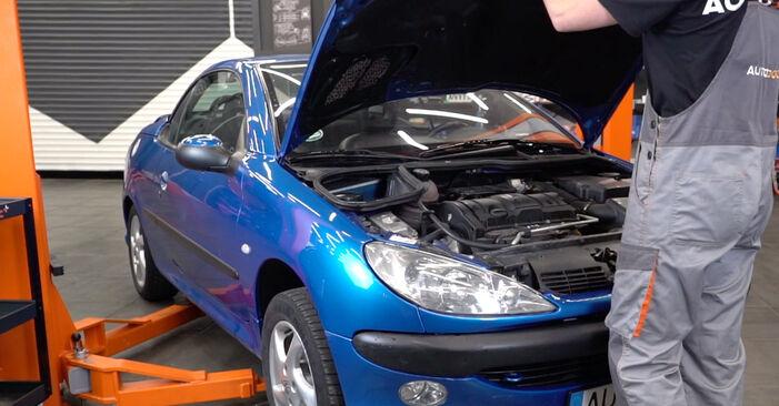 Como trocar Vela de Ignição no Peugeot 206 cc 2d 2000 - manuais gratuitos em PDF e vídeo