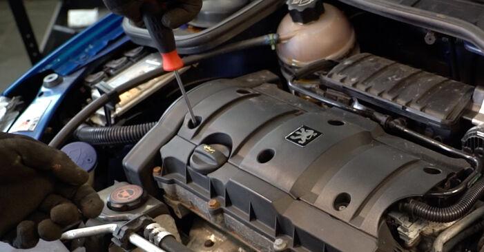 Substituição de Peugeot 206 cc 2d 2.0 S16 2002 Vela de Ignição: manuais gratuitos de oficina