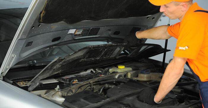 Domlager beim VW PASSAT 2.5 TDI 4motion 2001 selber erneuern - DIY-Manual