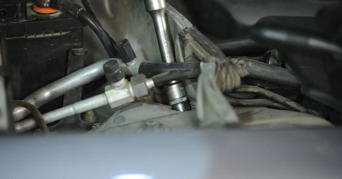 Wie VW PASSAT 1.6 2004 Domlager ausbauen - Einfach zu verstehende Anleitungen online