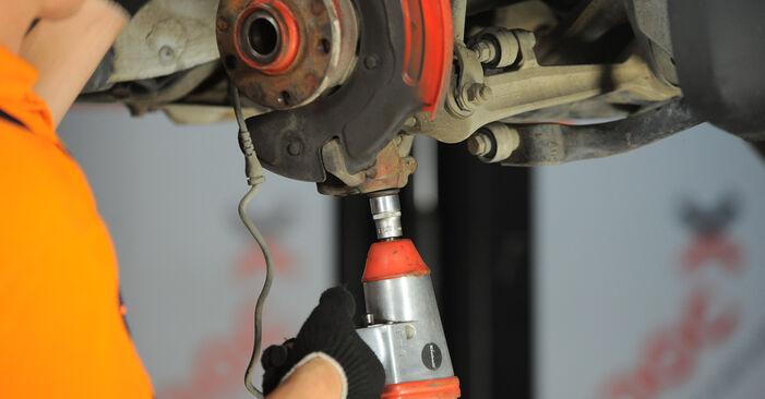 VW PASSAT 2001 Rato guolis išsami keitimo instrukcija
