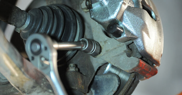 Pasikeiskite VW PASSAT Variant (3B6) 1.9 TDI 4motion 2002 Rato guolis patys - internetinė instrukcija