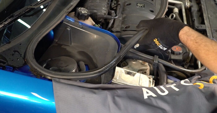 Bytte Peugeot 206 cc 2d 2.0 S16 2002 Støtdemper: gratis verkstedsveiledning
