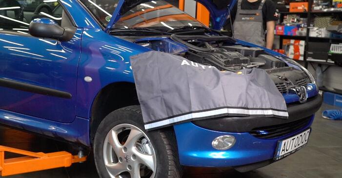 Hvordan skifte PEUGEOT 206 2007 Støtdemper trinn–for–trinn veiledning