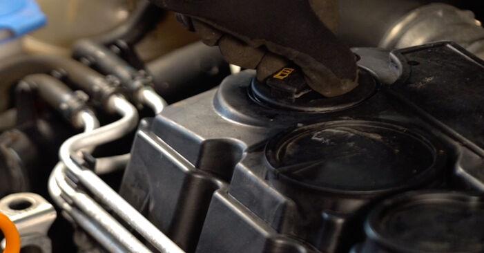 Ölfilter Touran 1T1, 1T2 2.0 TDI 2005 wechseln: Kostenlose Reparaturhandbücher