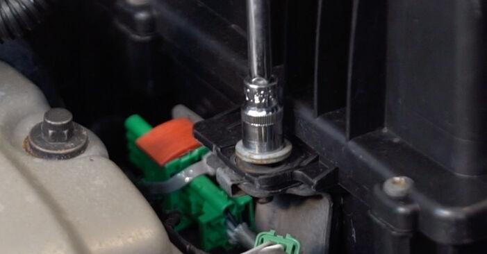 Kaip pakeisti CITROËN C3 I Hatchback (FC_, FN_) 1.4 HDi 2003 Oro filtras - išsamios instrukcijos ir vaizdo pamokos