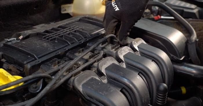 Смяна на Запалителна свещ на Renault Clio 2 2008 1.2 самостоятелно