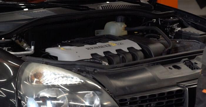 Come cambiare Filtro Olio su Renault Clio 2 1998 - manuali PDF e video gratuiti