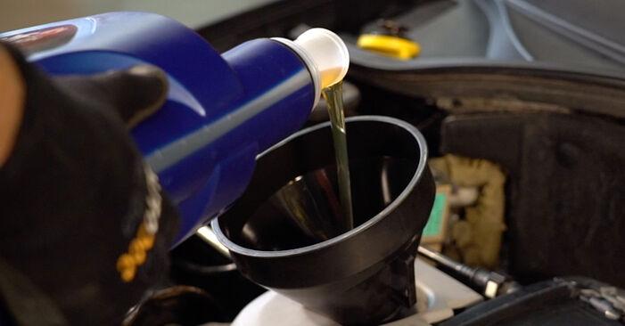 Sostituendo Filtro Olio su Renault Clio 2 2008 1.2 da solo