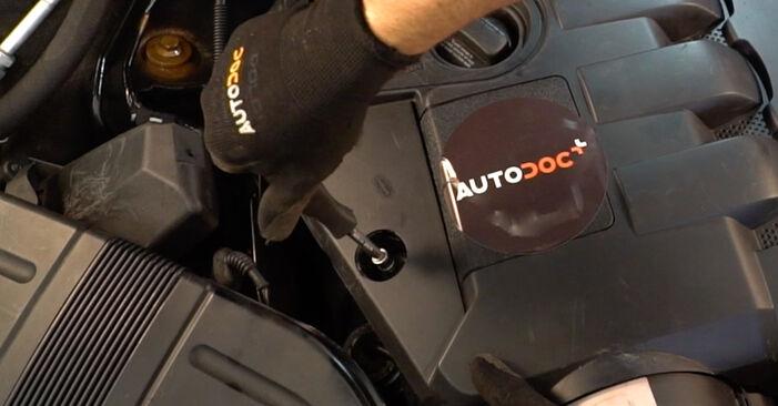 Kraftstofffilter am AUDI A4 Avant (8E5, B6) 2.0 2002 wechseln – Laden Sie sich PDF-Handbücher und Videoanleitungen herunter