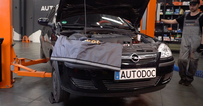 Wie schwer ist es, selbst zu reparieren: Federn Opel Corsa C 1.7 DI (F08, F68) 2006 Tausch - Downloaden Sie sich illustrierte Anleitungen