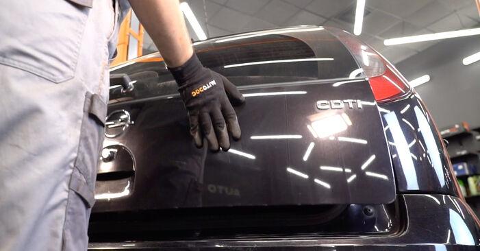 Hoe Schokbrekers wisselen OPEL Corsa C Hatchback (X01) 2005: download pdf-gidsen en video-tutorials