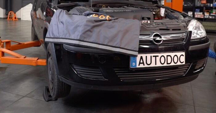 Koppelstange Opel Corsa C 1.3 CDTI (F08, F68) 2002 wechseln: Kostenlose Reparaturhandbücher