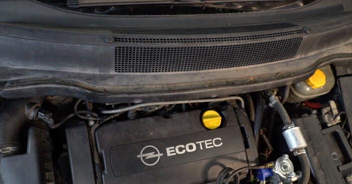 Schritt-für-Schritt-Anleitung zum selbstständigen Wechsel von Opel Zafira B 2007 1.6 CNG (M75) Stoßdämpfer