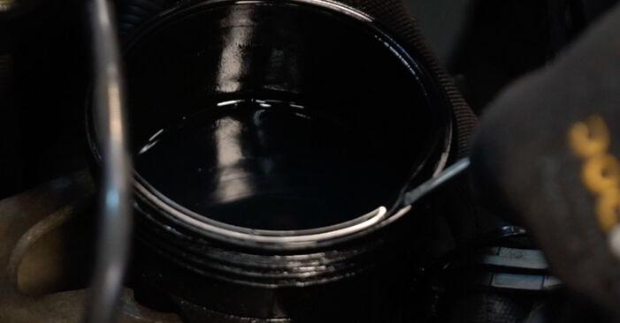 Tausch Tutorial Kraftstofffilter am CITROËN XSARA PICASSO (N68) 2011 wechselt - Tipps und Tricks