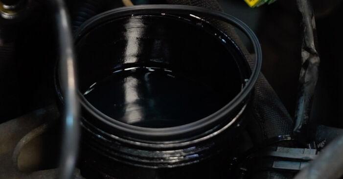 Schritt-für-Schritt-Anleitung zum selbstständigen Wechsel von Citroen Xsara Picasso 2012 1.6 16V Kraftstofffilter