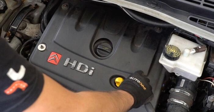 Wie schwer ist es, selbst zu reparieren: Kraftstofffilter Citroen Xsara Picasso 2.0 HDi 2005 Tausch - Downloaden Sie sich illustrierte Anleitungen