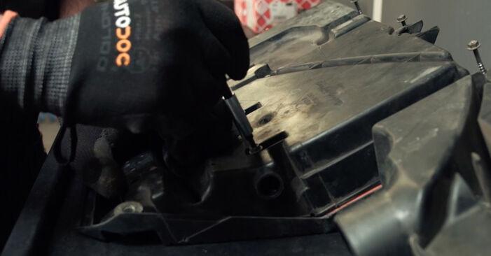 Pasikeiskite FORD Fiesta Mk5 Hatchback (JH1, JD1, JH3, JD3) 1.3 2005 Oro filtras patys - internetinė instrukcija