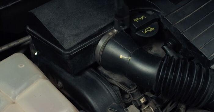 Savarankiškas FORD Fiesta Mk5 Hatchback (JH1, JD1, JH3, JD3) 1.25 16V 2004 Oro filtras keitimas
