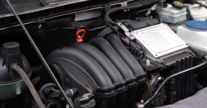 Consigli passo-passo per la sostituzione del fai da te Mercedes W245 2011 B 150 1.5 (245.231) Filtro Olio