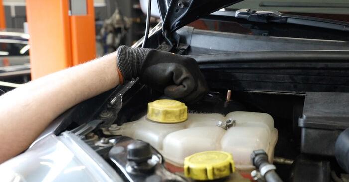Slik bytter du FORD Fiesta Mk5 Hatchback (JH1, JD1, JH3, JD3) 1.4 TDCi 2002 Støtdemper selv – trinn-for-trinn veiledninger og videoer