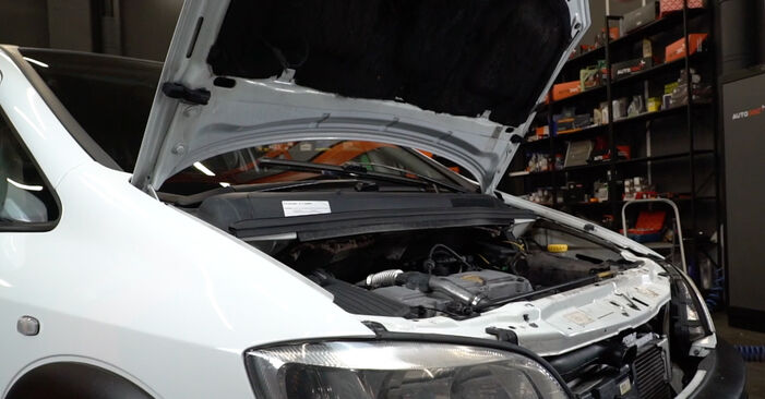 Wie man Ölfilter am Opel Zafira A 1999 ersetzt - Kostenfreie PDF- und Videotipps